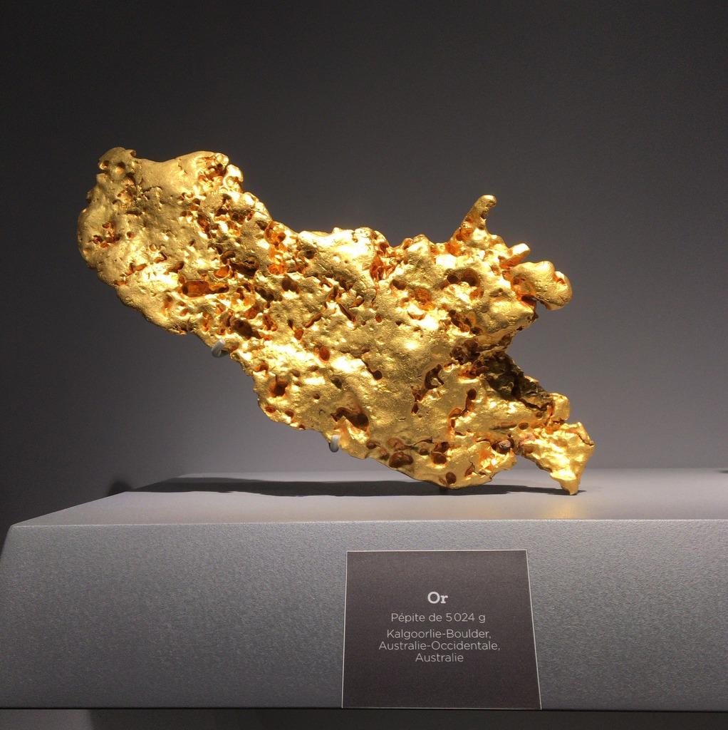 目の保養に博物館から自然金